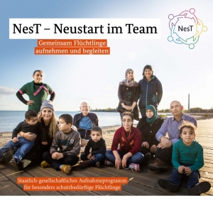 thumbnail of NesT-Flyer